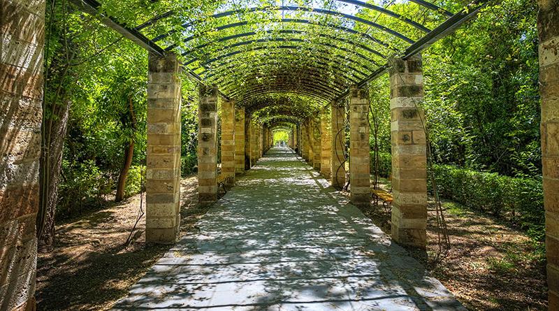 the-national-garden
